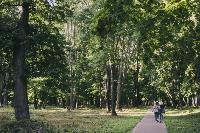 Летний день в богородицком парке, Фото: 1