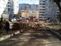 Поваленное дерево на ул.Октябрьской, Фото: 1