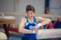 Тульский гимнаст Иван Шестаков, Фото: 10