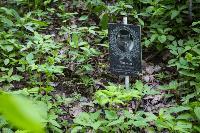 Кладбище домашних животных в Туле, Фото: 67