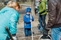 Посадка деревьев во дворе на ул. Максимовского, 23, Фото: 22