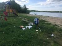 В Черепетском водохранилище массово погибла рыба, Фото: 3