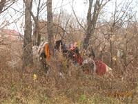 Ситуация с уборкой мусора в Пролетарском районе, Фото: 7
