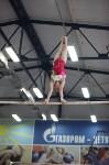 Соревнования по спортивной гимнастике на призы Заслуженных мастеров спорта , Фото: 69