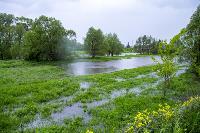 Дедилово затопило, Фото: 15