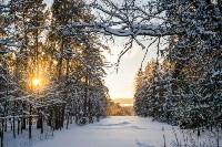 Снежное Поленово, Фото: 37