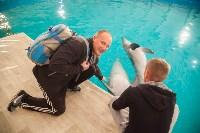 Дельфины, Фото: 6