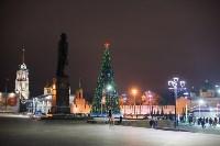 Туляки отметили Старый Новый год ледовым шоу, Фото: 56