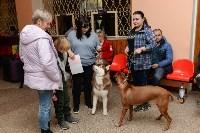 """Выставки собак в ДК """"Косогорец"""", Фото: 46"""