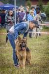 Международная выставка собак, Барсучок. 5.09.2015, Фото: 50