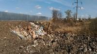 В Туле на берегу Тулицы обнаружен незаконный мусорный полигон, Фото: 18