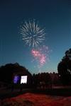 """Фейерверк в честь """"Арсенала"""" в Центральном парке. 16 мая 2014, Фото: 20"""