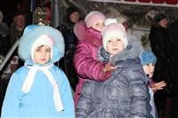 Ёлка на площади Ленина. 25 декабря 2013, Фото: 19