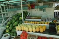 Рейд по незаконной продаже арбузов, Фото: 1