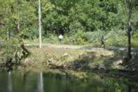В Туле проводят работы по благоустройству зон отдыха. 26 июля 2014 год, Фото: 8