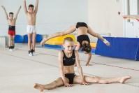 Тренировка гимнасток, Фото: 29