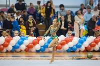 Открытый кубок региона по художественной гимнастике, Фото: 42
