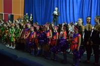 Открытый Чемпионат Тульской области по черлидингу, Фото: 33
