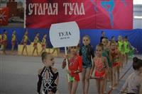 IX Всероссийский турнир по художественной гимнастике «Старая Тула», Фото: 22