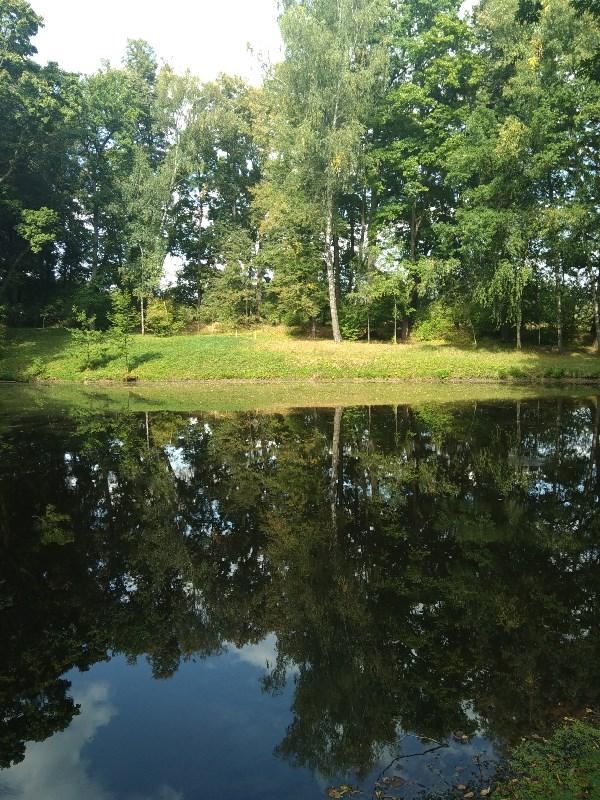 Ясная Поляна. Любимый пруд графа Л.Н.Толстого.