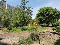 вырубка деревьев во дворе дома №33 по ул. Горького в Туле, Фото: 6