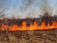 В Федоровке огонь с горящего поля едва не перекинулся на дома, Фото: 17