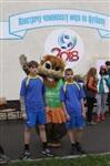 В Новомосковске прошел турнир по футболу, Фото: 12