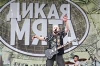 """""""Дикая Мята - 2014"""", Фото: 13"""