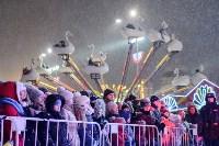 На площади Ленина прошло закрытие главной городской ёлки, Фото: 8