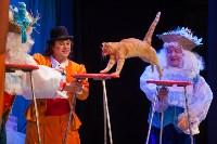 Театр кошек в ГКЗ, Фото: 34
