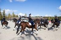 Кубок губернатора Тульской области по конкуру 2019, Фото: 129