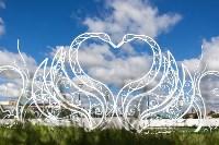 Кованая композиция «Лебеди» у ротонды, Фото: 7