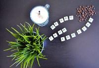 Мокко, launge-кафе, Фото: 3