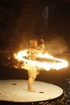 В Тульском цирке прошла премьера аква-шоу, Фото: 79