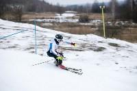 I-й этап Кубка Тулы по горным лыжам и сноуборду., Фото: 32