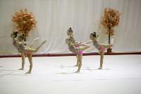 """Соревнования по художественной гимнастике """"Осенний вальс"""", Фото: 78"""