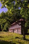 Летний день в Ясной Поляне, Фото: 13