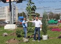 Высадка деревьев и растений ко Дню города, Фото: 4
