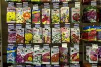 Леруа Мерлен: Какие выбрать семена и правильно ухаживать за рассадой?, Фото: 17