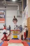 Первенство ЦФО по спортивной гимнастике, Фото: 110