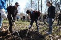Посадка деревьев в Комсомольском парке, Фото: 19
