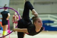 Соревнования по художественной гимнастике 31 марта-1 апреля 2016 года, Фото: 78
