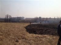 В Ленинском районе из-за горящей травы сгорела дача, Фото: 5