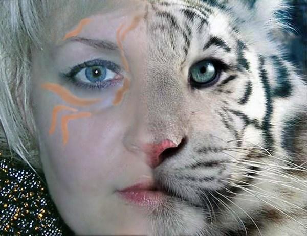 Я родилась в год Тигра. С 9-го класса старалась быть блондинкой. Поэтому белый тигр - это я   :-)