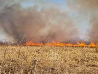 В Федоровке огонь с горящего поля едва не перекинулся на дома, Фото: 16