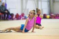 Открытый кубок региона по художественной гимнастике, Фото: 54