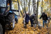 В Центральном парке Тулы появился сосновый бор «Слободы», Фото: 46