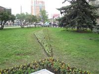 В Туле ко Дню Победы высадили 88, 5 тысяч цветов, Фото: 1