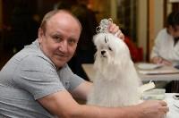 """Выставки собак в ДК """"Косогорец"""", Фото: 4"""