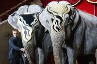 """Пресс-конференция """"Шоу слонов"""", Фото: 35"""